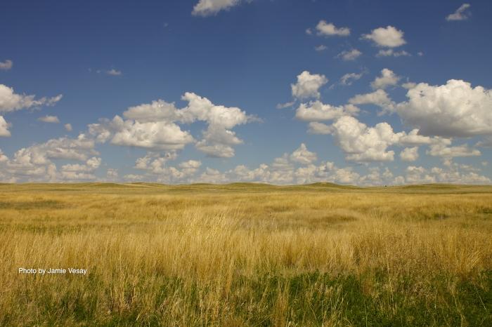 Sandhills of Nebraska Jamie Vesay WM TRD IMG_9548 - Version 2